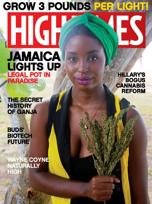 Adam Levin And Damian Marley Acquire Controlling Interest In High Times Magazine